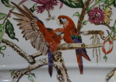 Pots Red parrot detail
