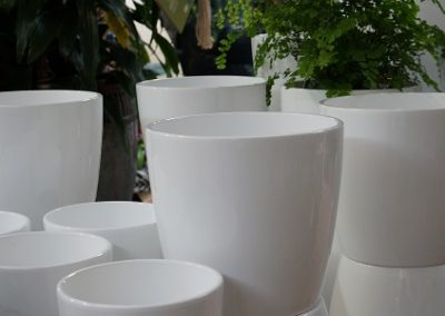Pots white glazed cover JIW