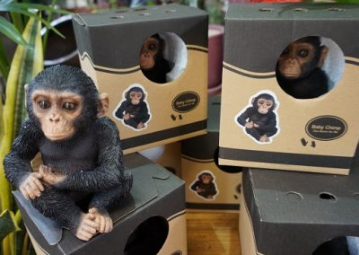 Chimp baby JIW