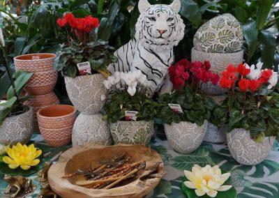 Pots & leopard JIW